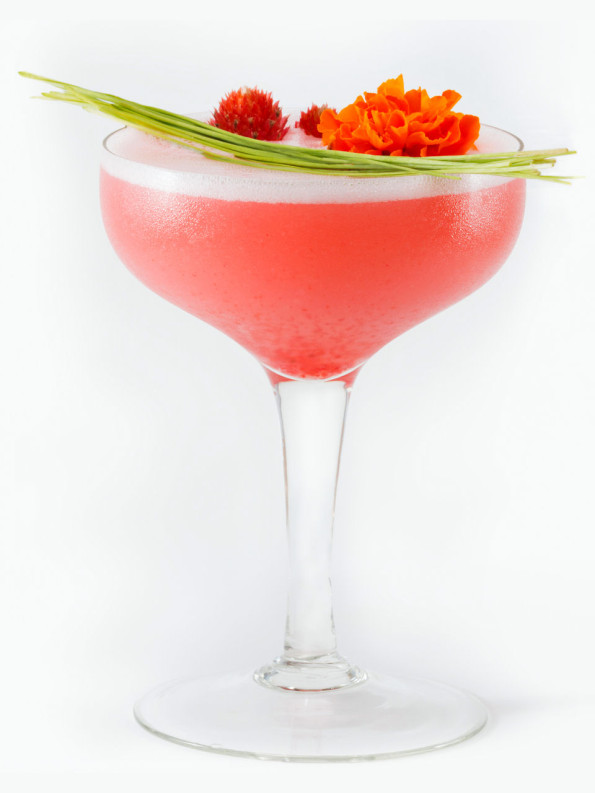 Picture of a Shrub Cocktail